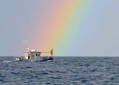 atlantic-gallery-Barber_Rainbow