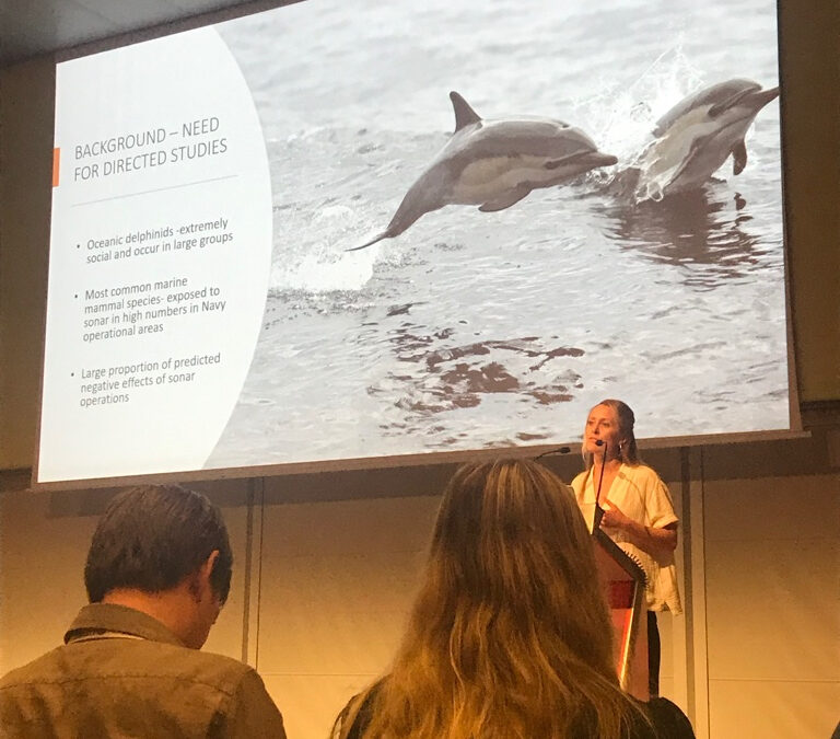 SEA Scientists Present Science and Conservation at World Marine Mammal Conference